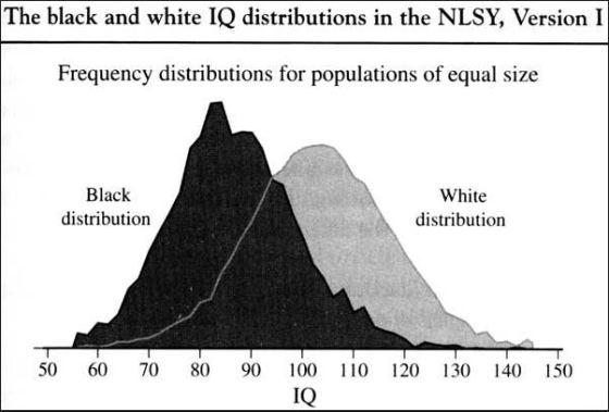 IQ Distributions